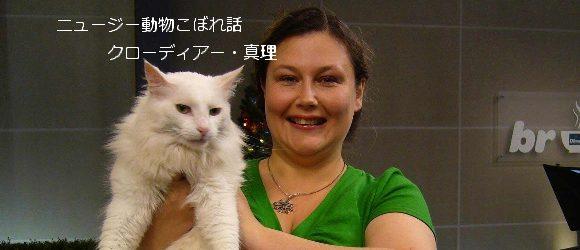 第2回 猫ナシのニュージーランドなんて!