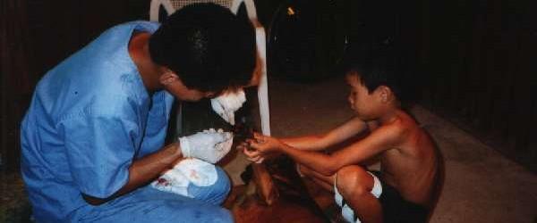 第14回 学校では学べない体験……犬の手術