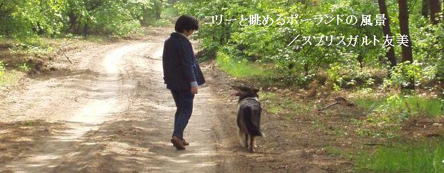 第2回 散歩で広がる犬仲間の輪